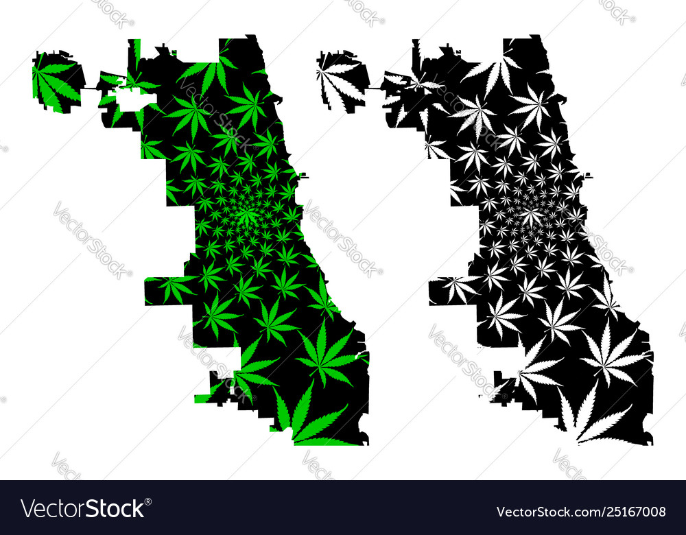 Chicago city - map is designed cannabis leaf Vector Image