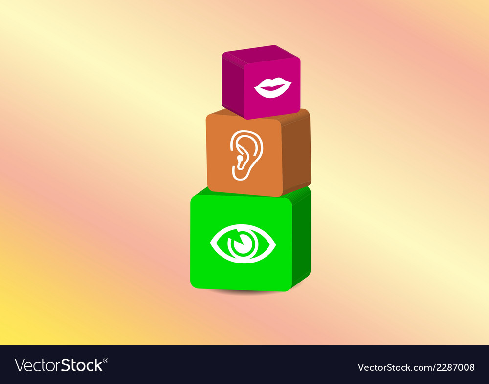 Cubes with three senses vector image