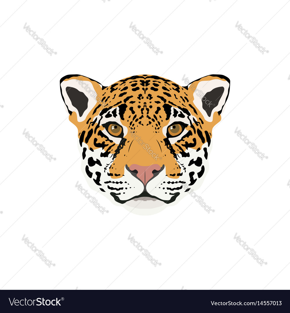Abstract color jaguar head