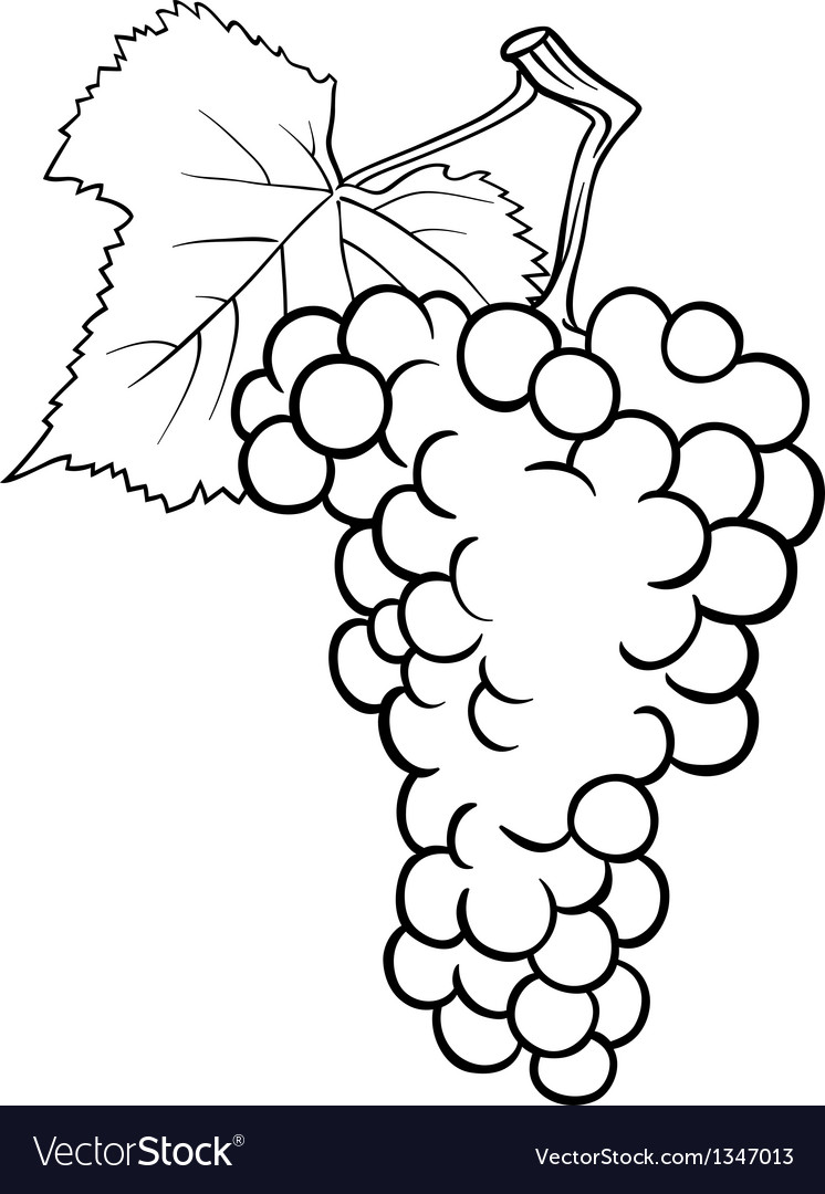 Grapes for coloring book Royalty Free Vector Image