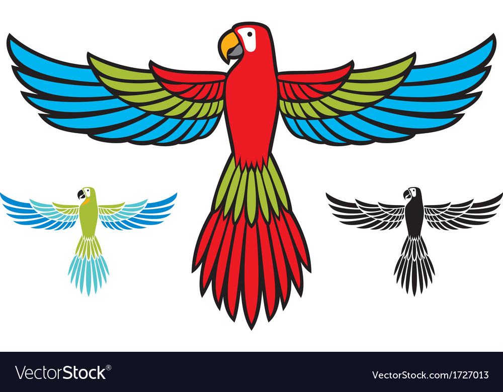 Parrot flying vector image