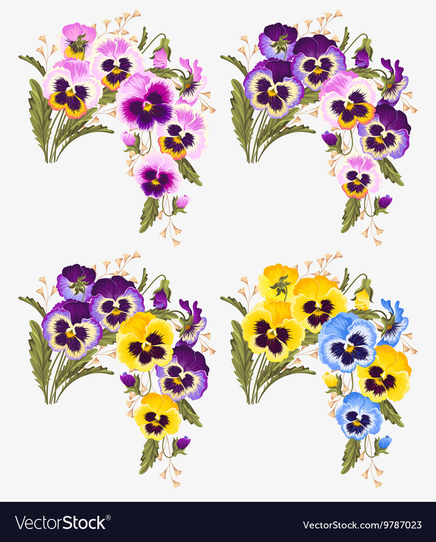 Set of pansy bouquets vector image