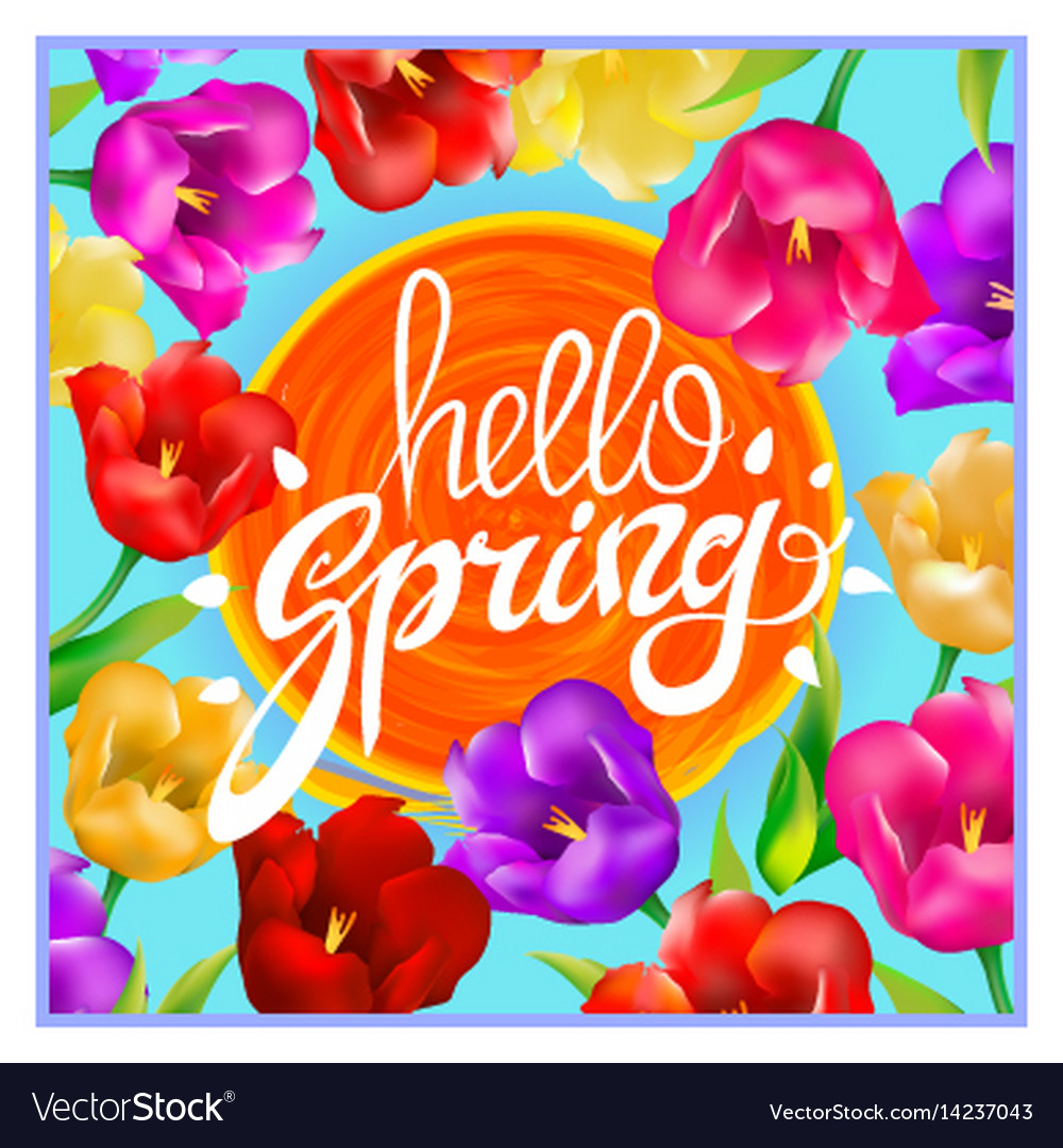 Hello spring colotful tulips flowers background