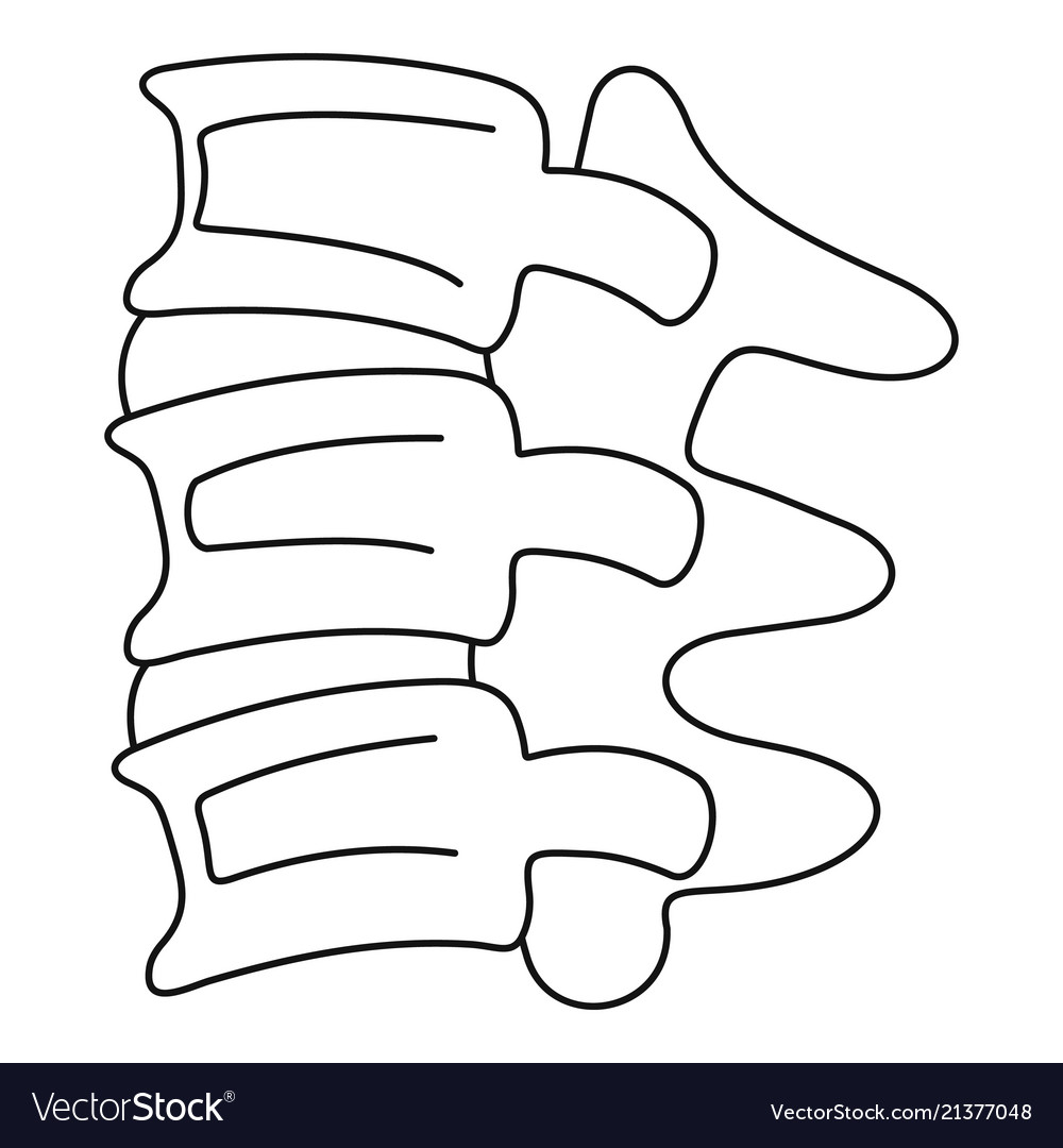 Spinal Column Discs Icon Outline Style Royalty Free Vector