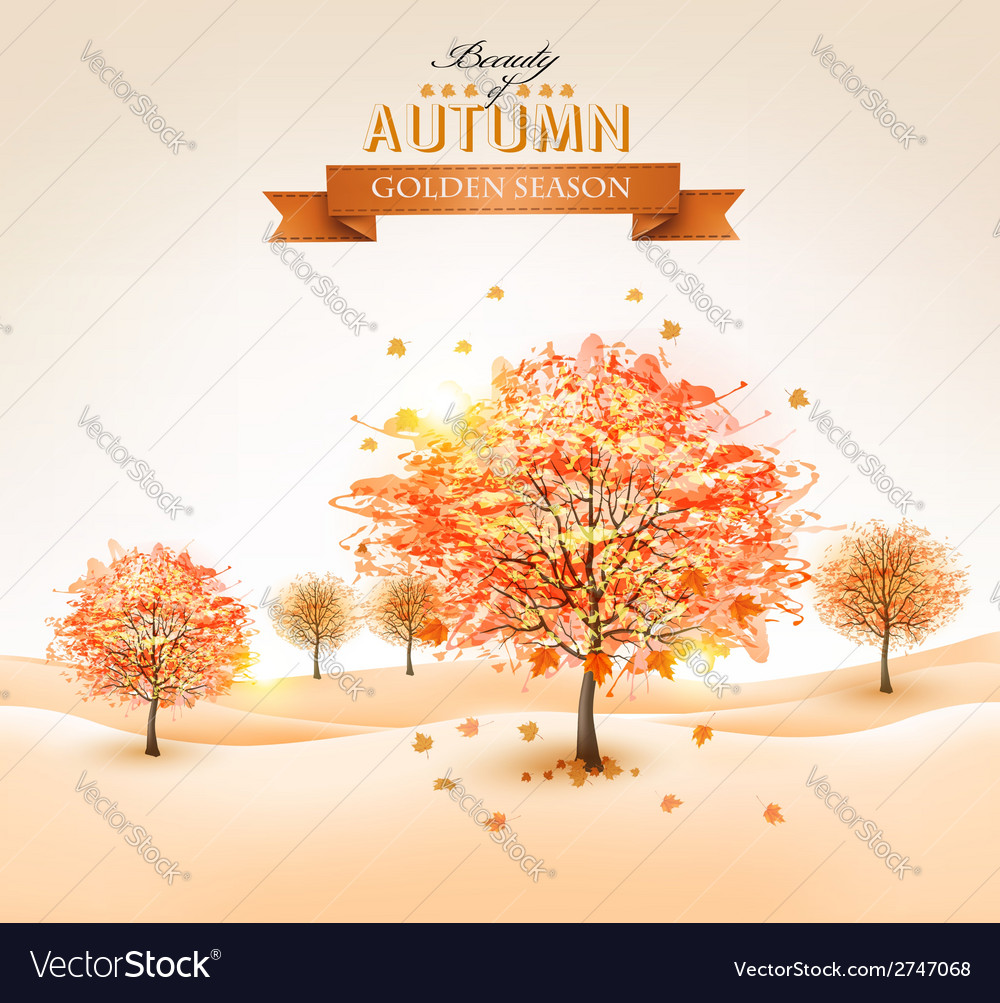 Autumn background with colorful leaves and trees