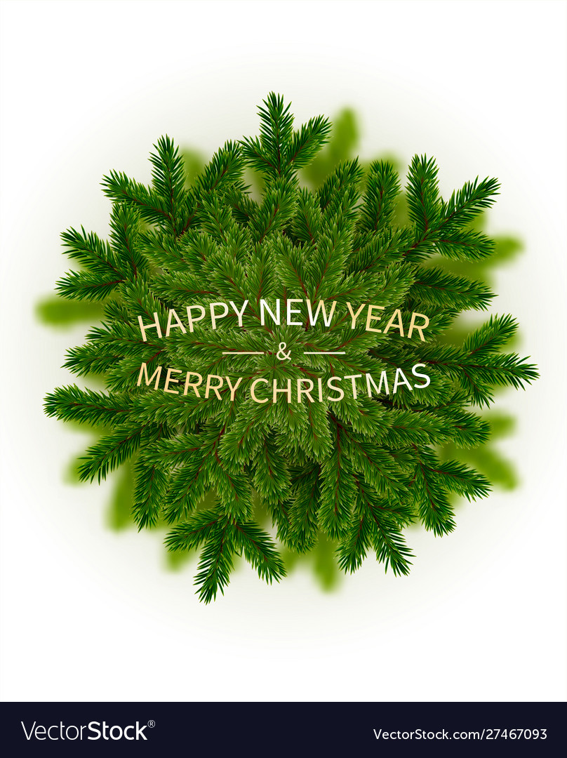 Green pine branches blur decorative christmas