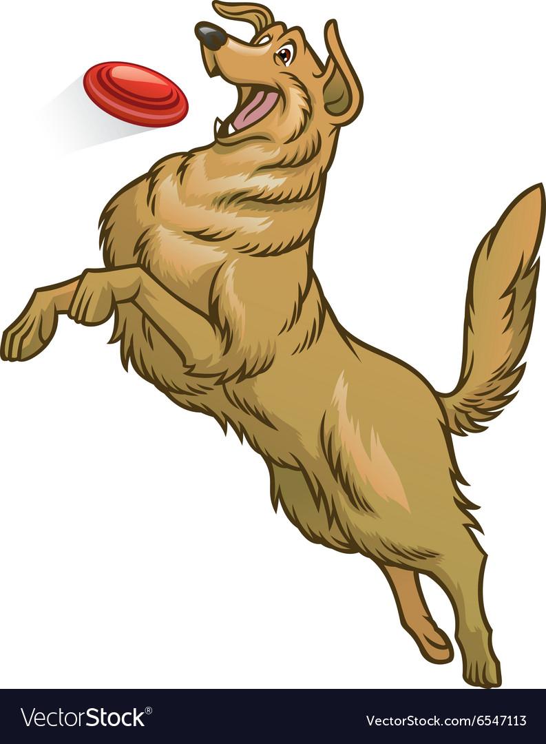 Happy golden retriever dog playing frisbee