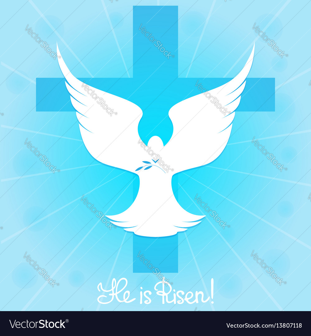 Pigeon in the sky by the cross he is risen vector image