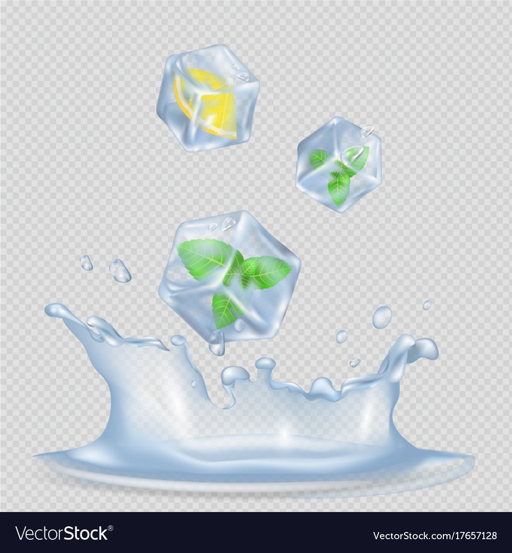 ice cubes with mint leaves and lemon royalty free vector vectorstock