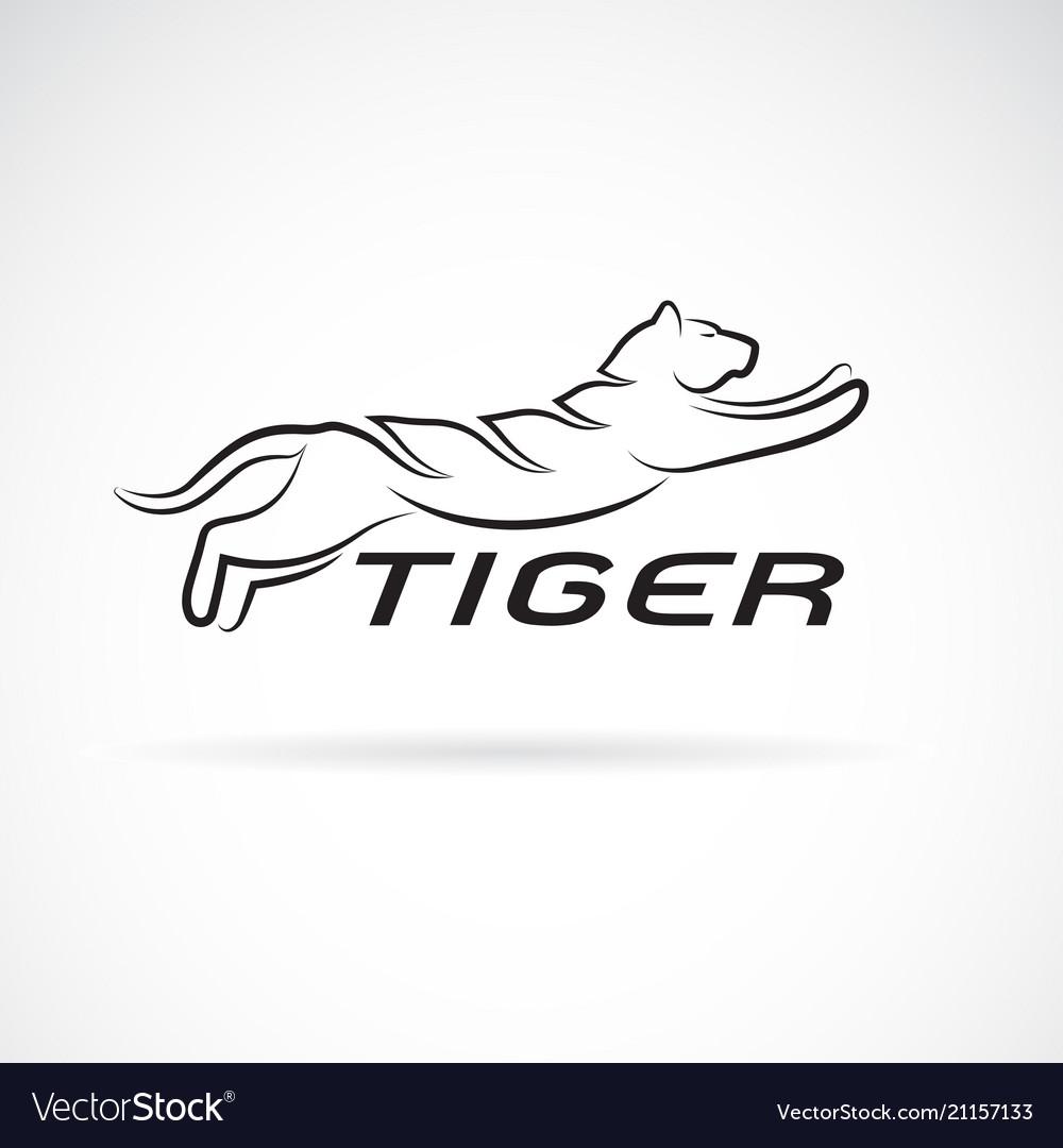 Black tiger design on white background wild