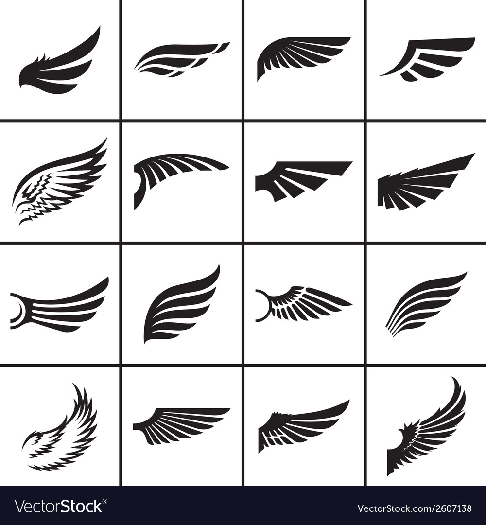 Wings design elements set in different styles
