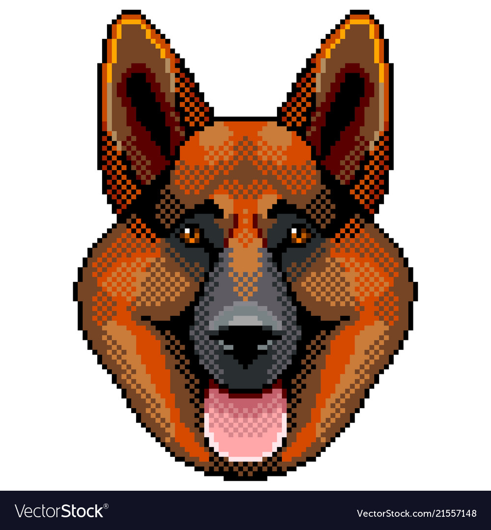 Pixel sheepdog face portrait detailed isolated
