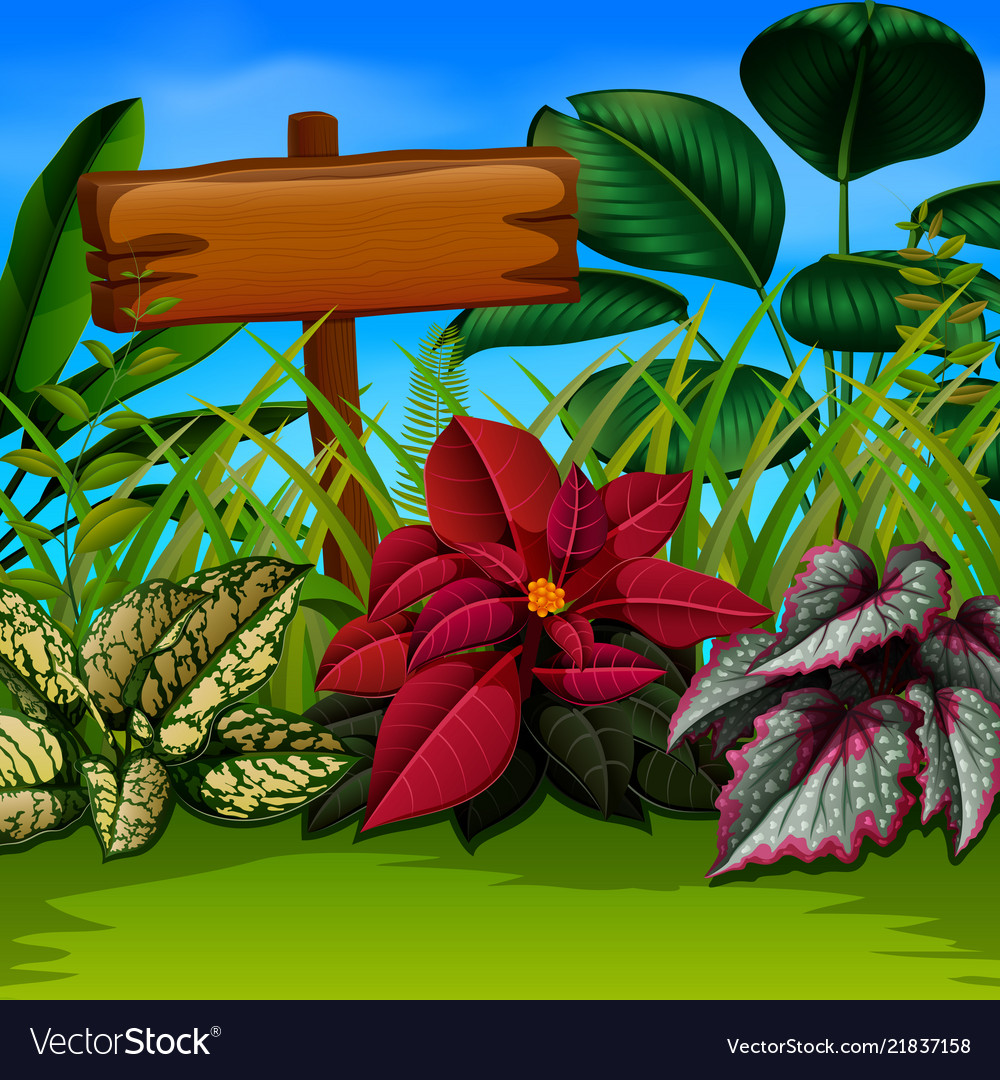 An nature walpaper with the wooden board and leave