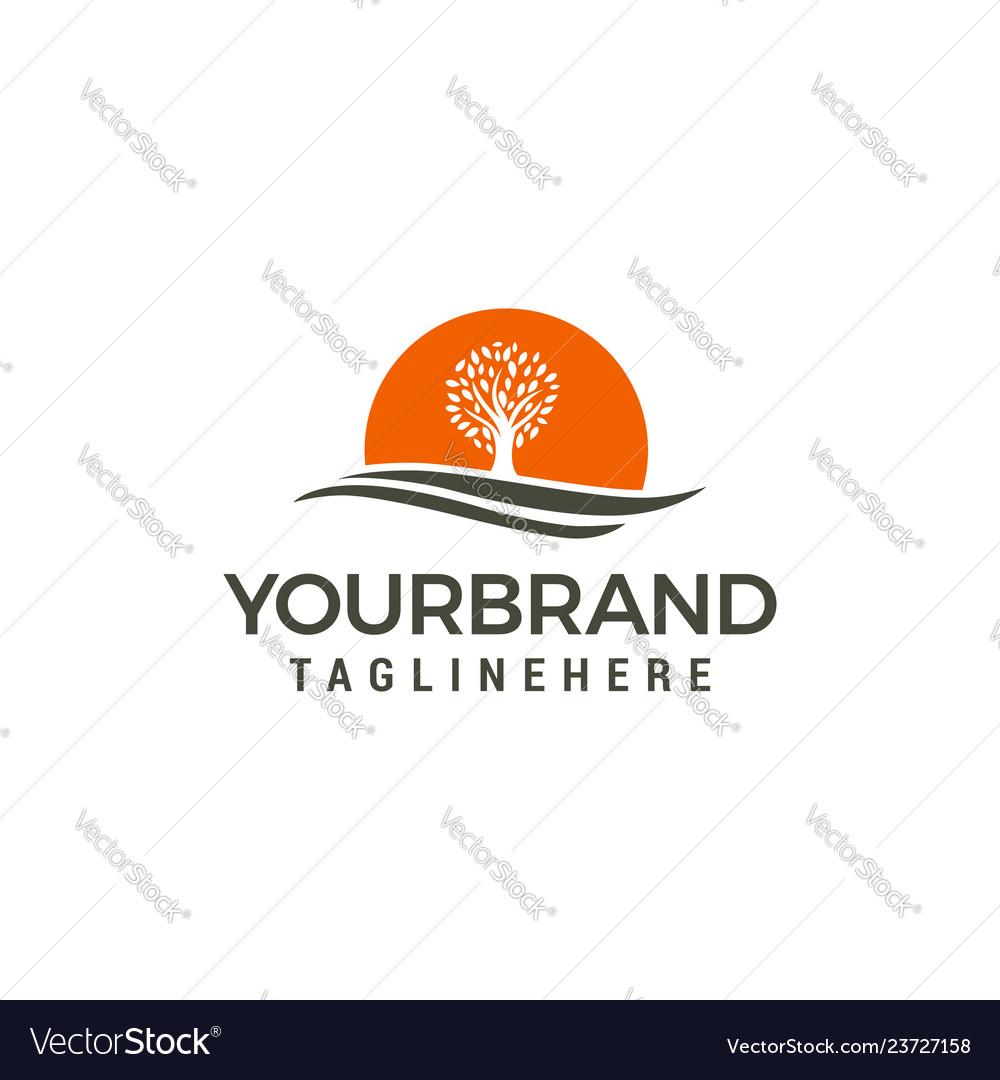 Tree sun logo design template