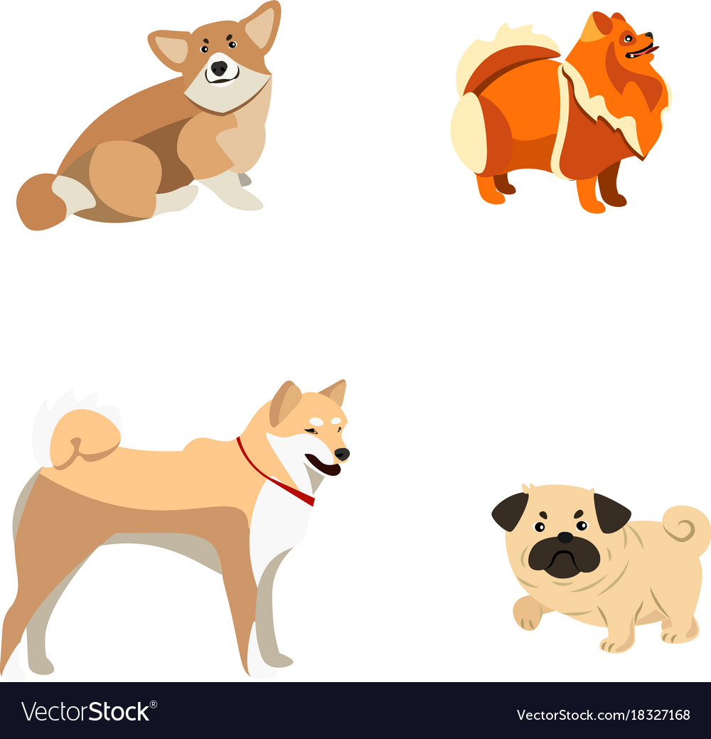 Set of different dogs