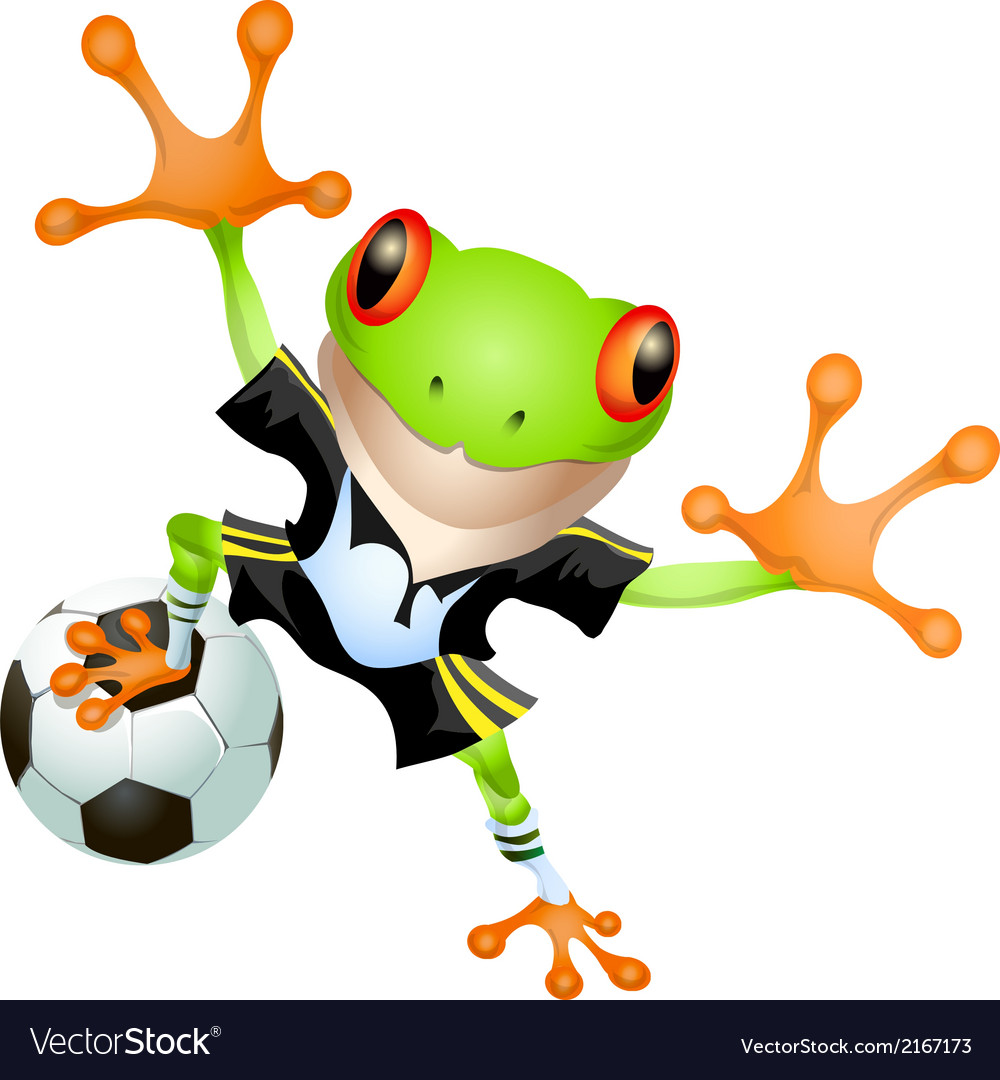 Goalkeeper frog vector image