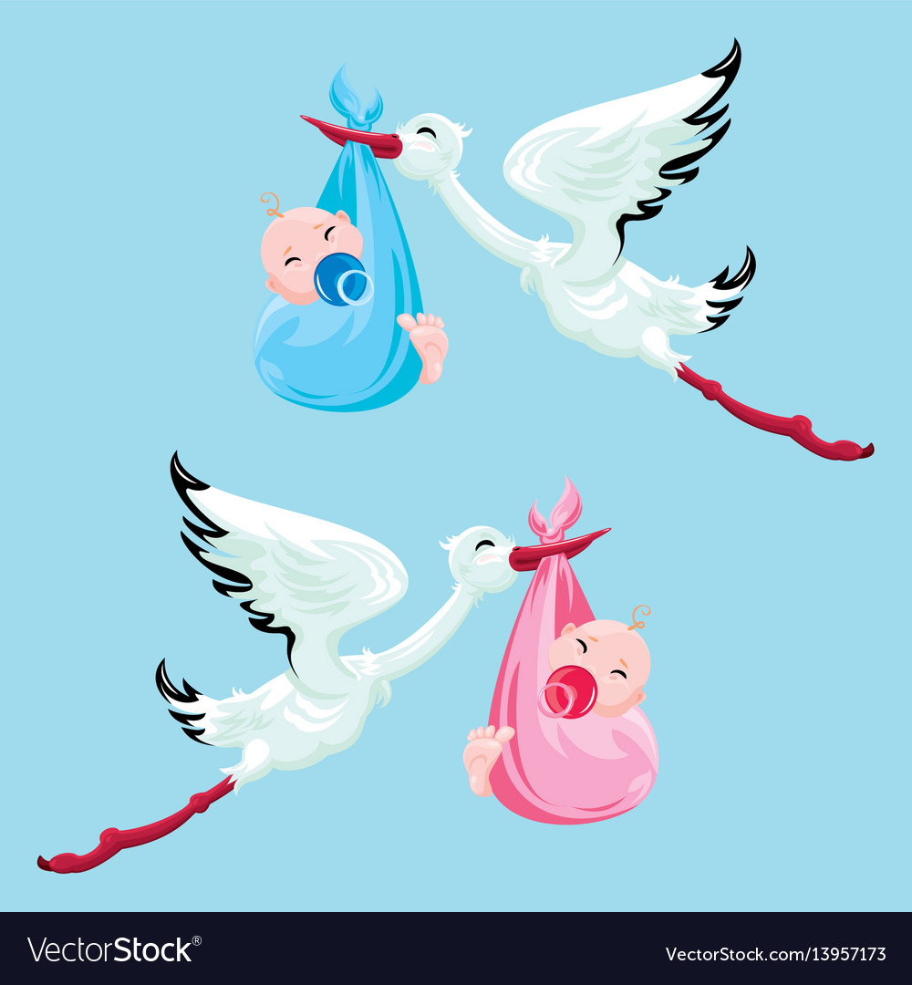 Set of images stork with boy and girl elements