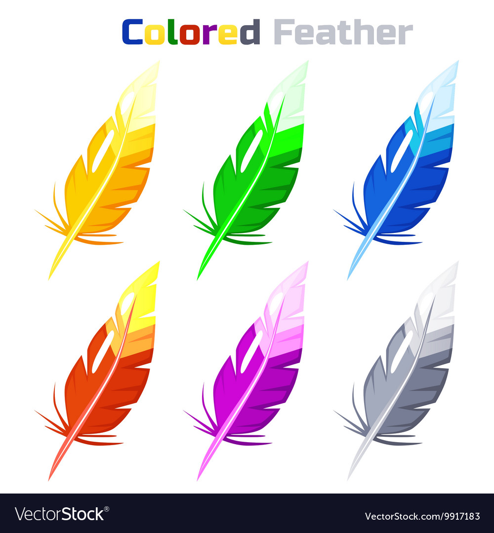 Colored Feather isolated on white background