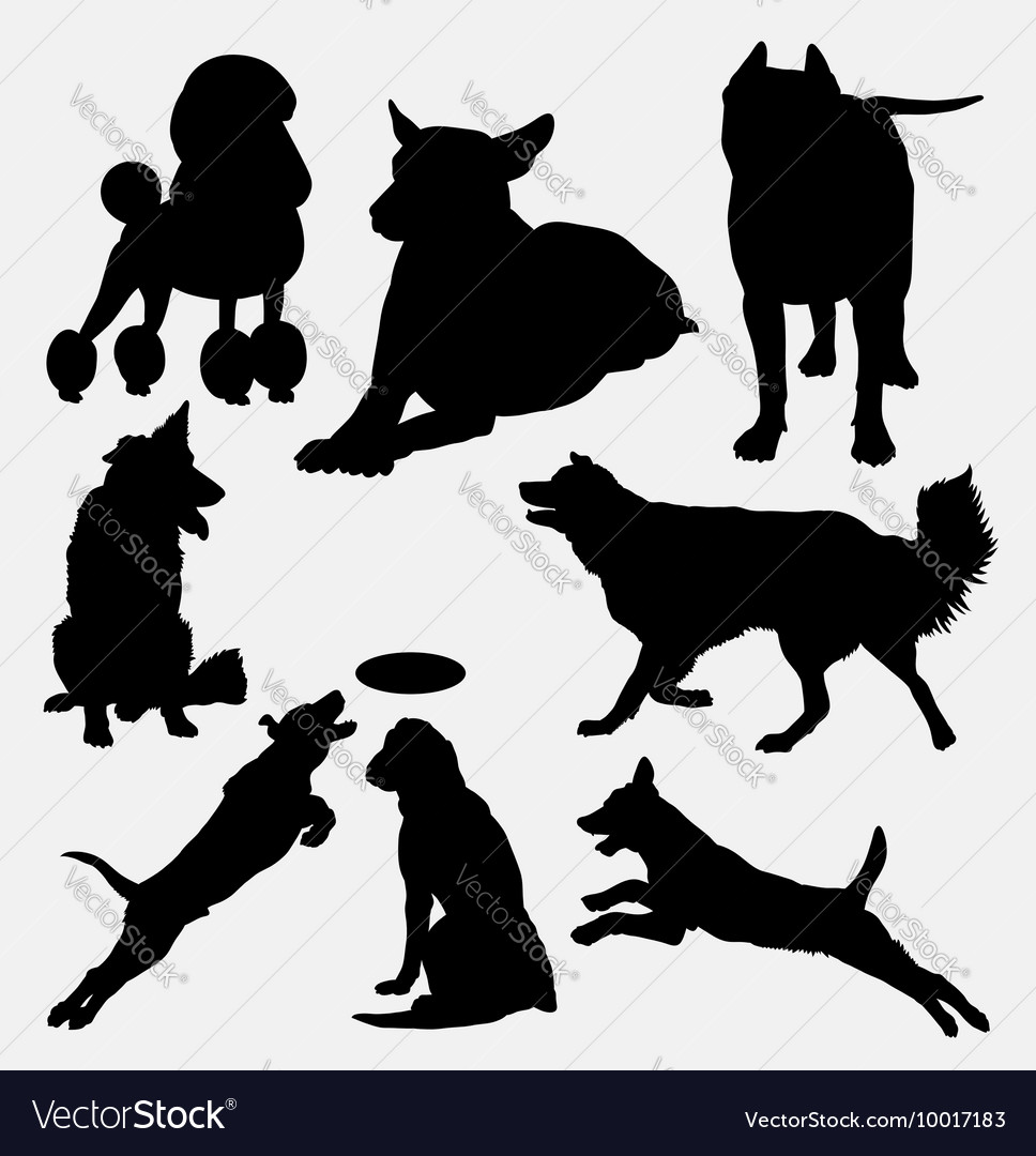 Dog pet animal silhouette 14