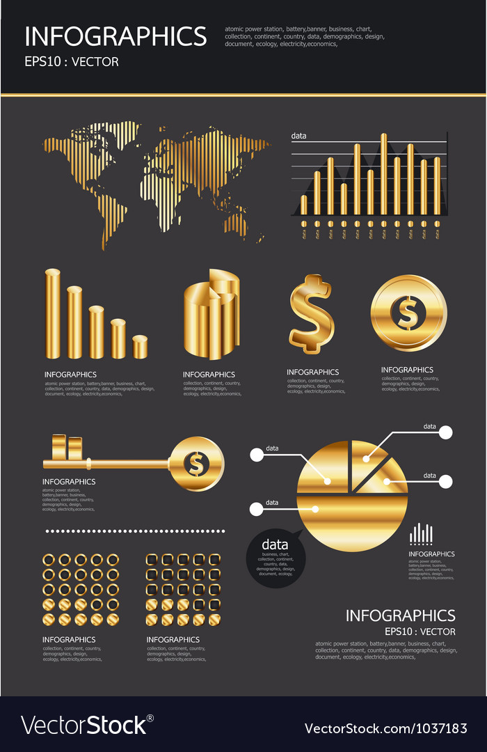 Gold infographics se vector image