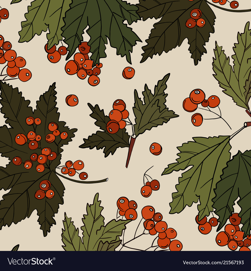 Rowan colored red berry with green leaves patter