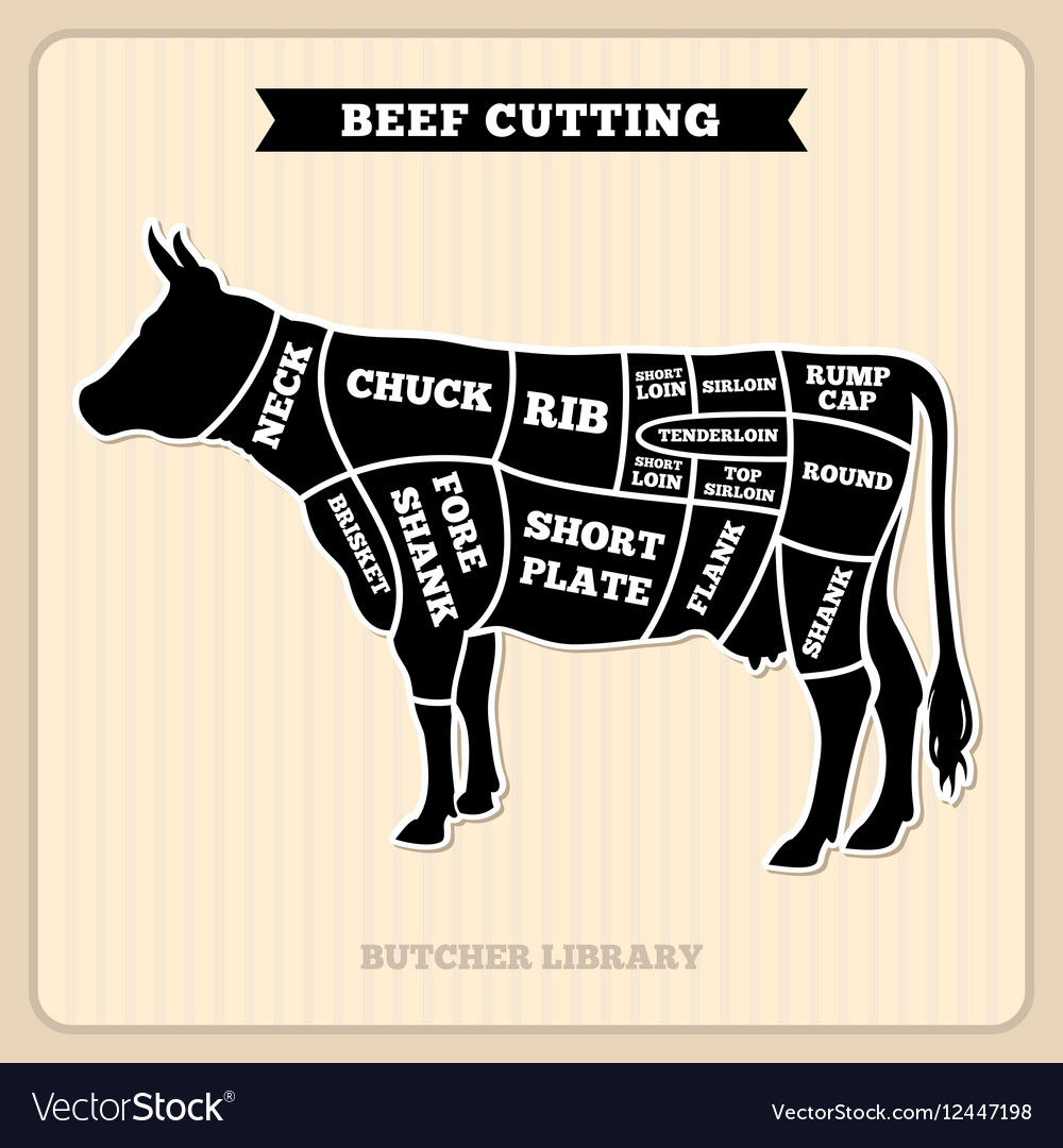 Cow Beef Cut Diagram Another Blog About Wiring For Box Cdi Iha6007 Cuts Butcher Royalty Free Vector Image Rh Vectorstock Com