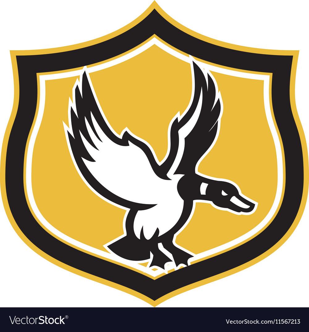 Mallard Duck Wings Landing Crest Retro vector image