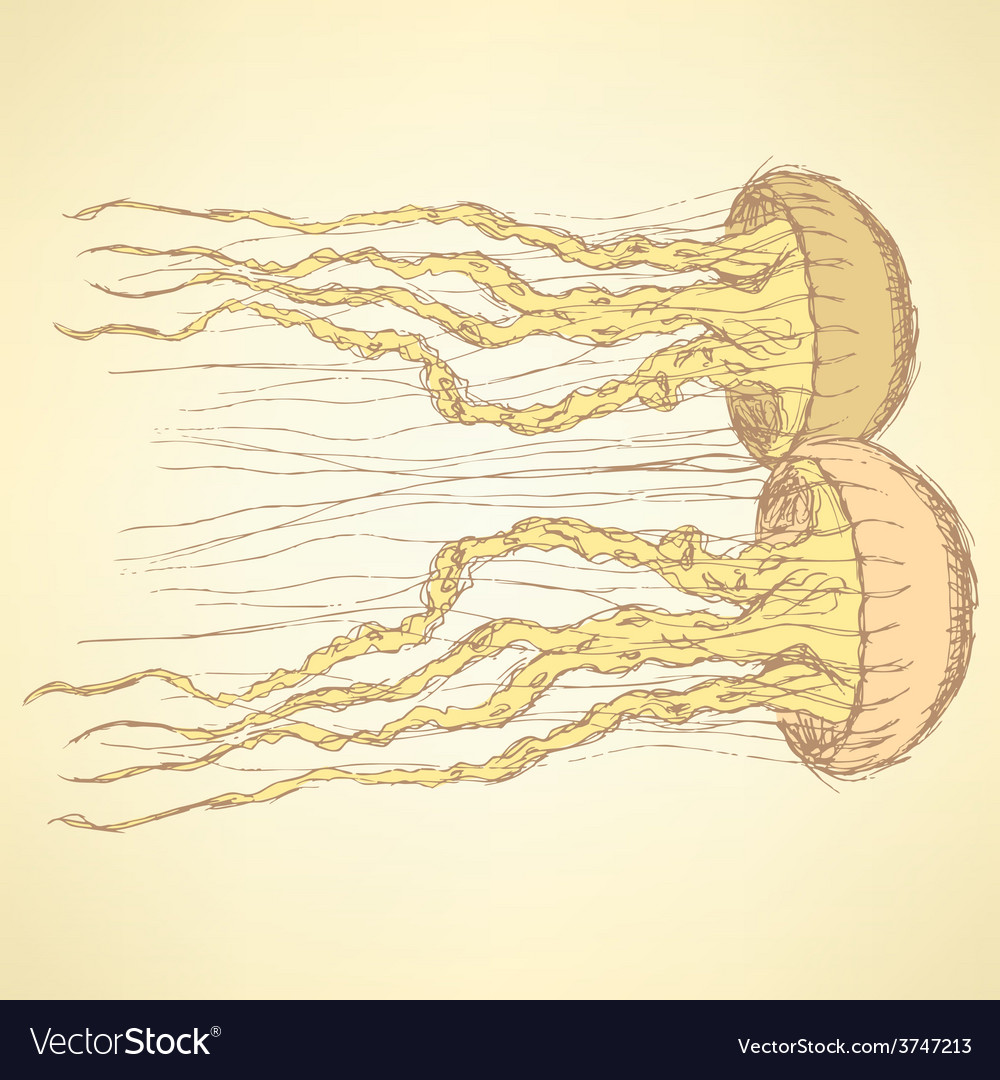 Sketch cute jellyfish in vintage style Royalty Free Vector