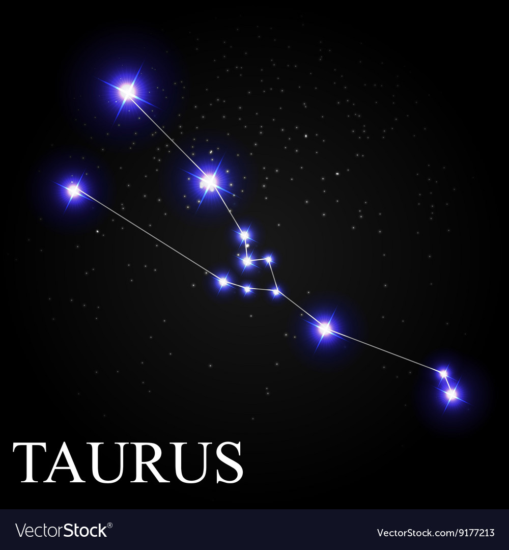 Taurus Zodiac Sign with Beautiful Bright Stars on Vector Image