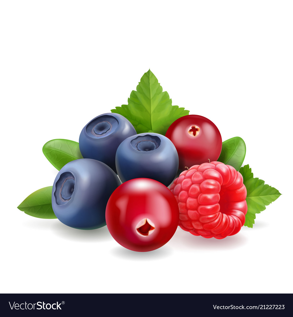 Blueberry raspberry and cranberry forest berry