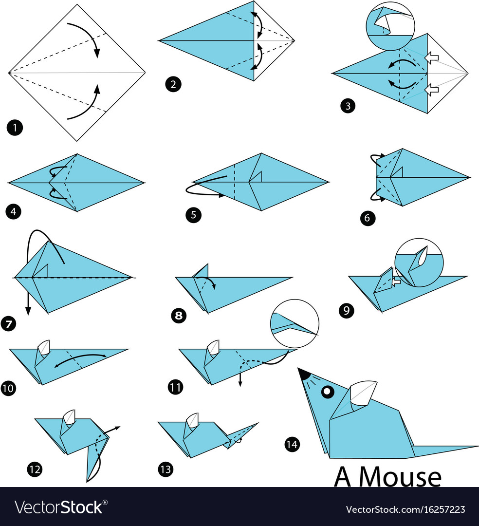 Step Instructions How To Make Origami A Mouse Vector Image