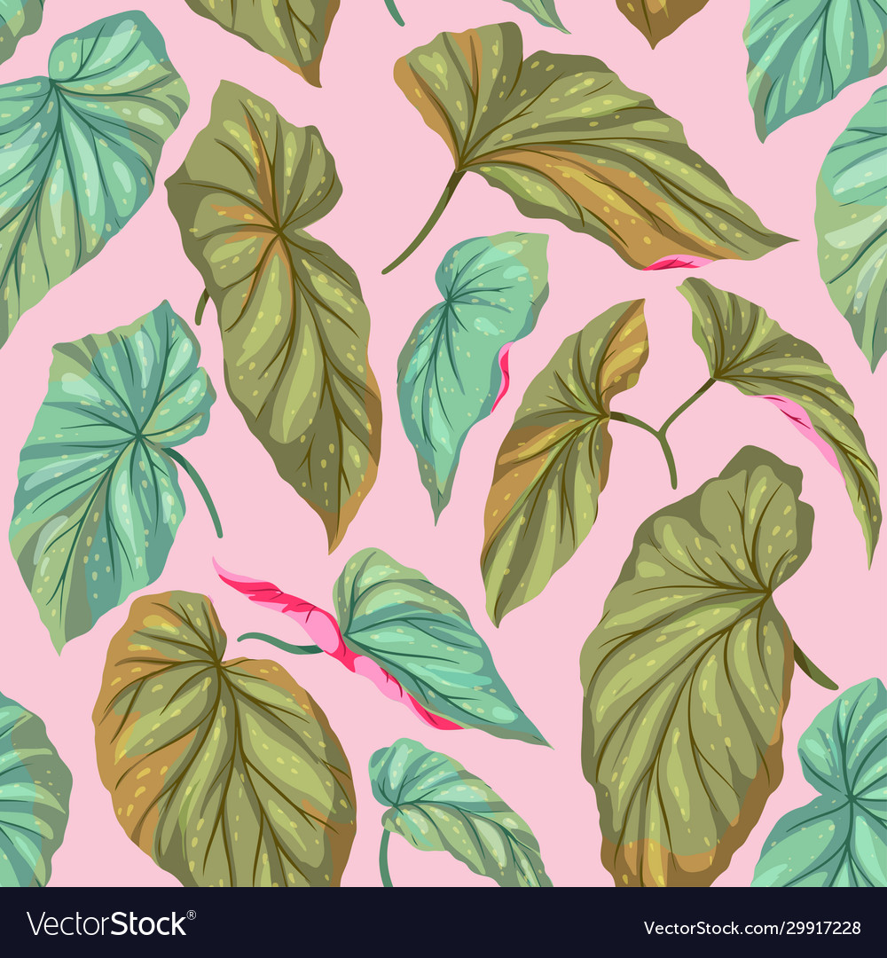 Green leaves on a pink background