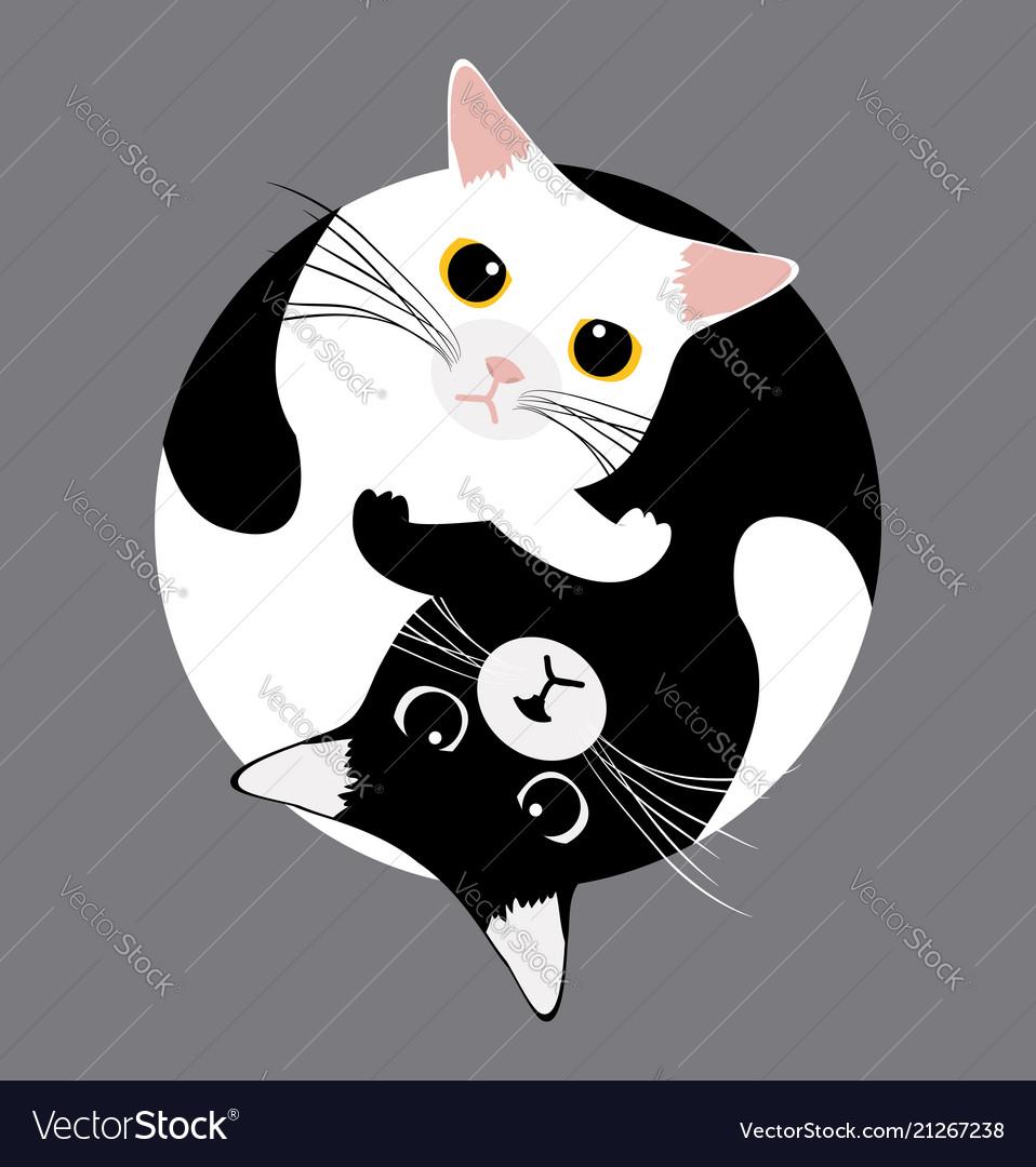 Yin yang cats sleep