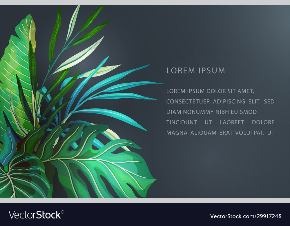 Tropical leaves banner concept