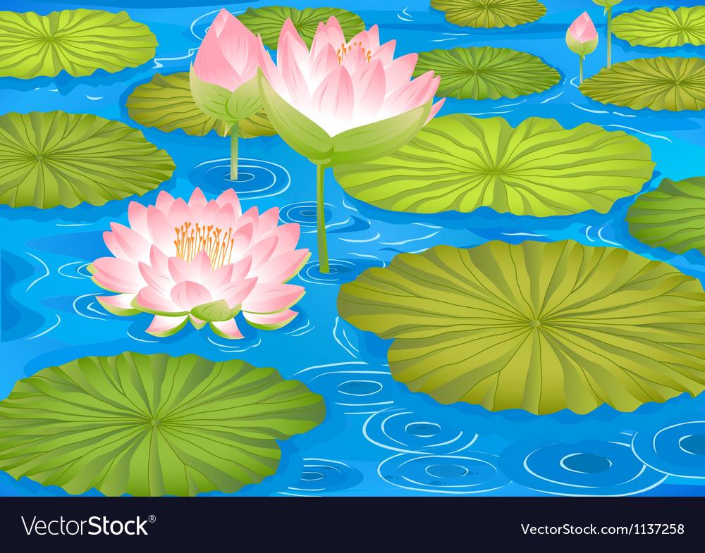 Lotus Flowers In Pond Royalty Free Vector Image
