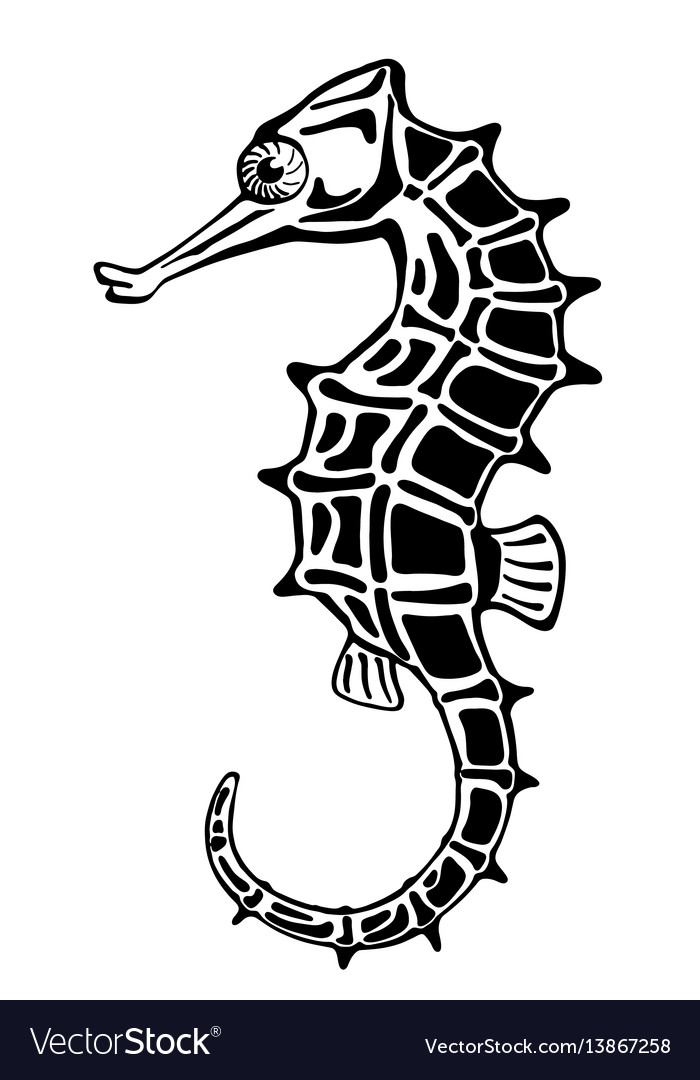 Seahorse stylized ink drawing vector image