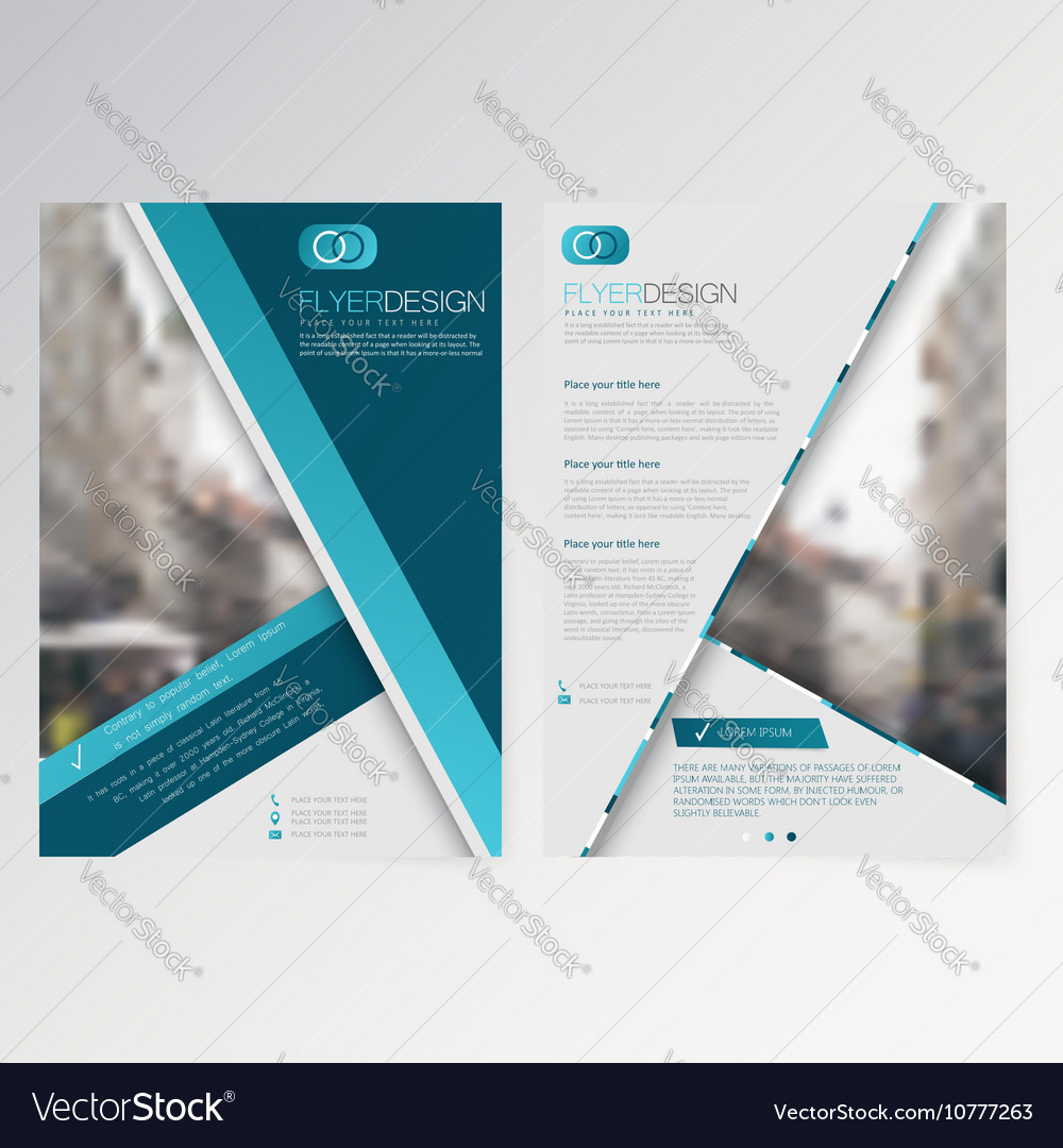 template flyer design royalty free vector image