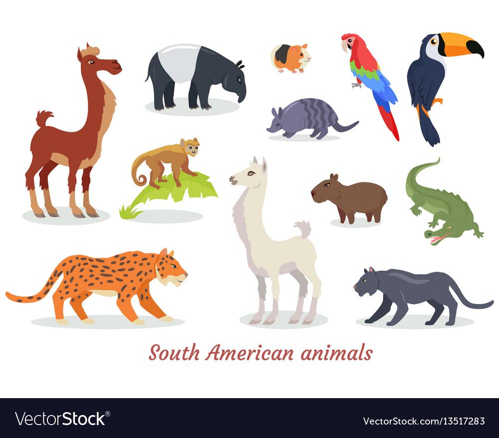 South american animals cartoon set