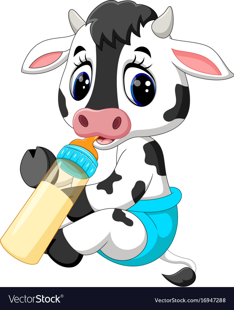 cute baby cow cartoon royalty free vector image