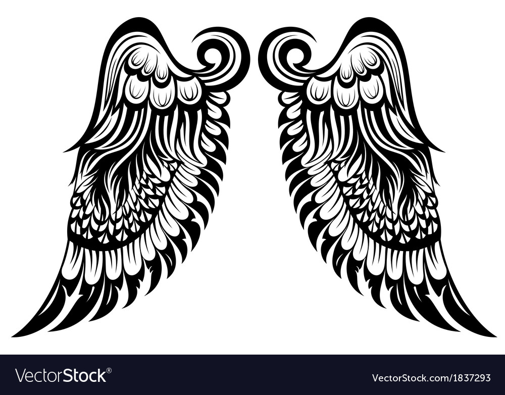angel wings royalty free vector image vectorstock rh vectorstock com wind vector map wing vector designs