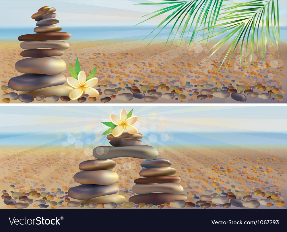 Massage spa stones vector image
