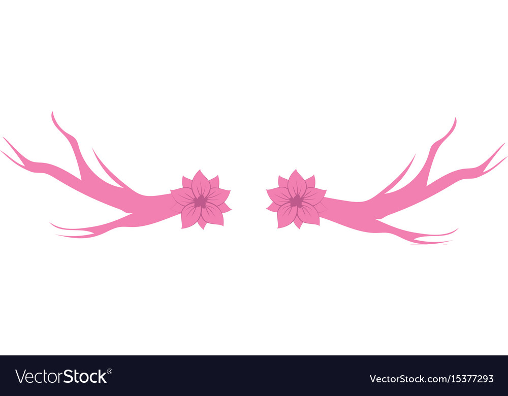 Rustic branches with flower and leaves vector image