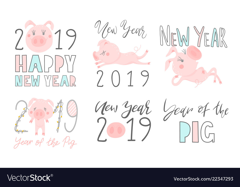 Set 2019 text design pattern with cute pigs