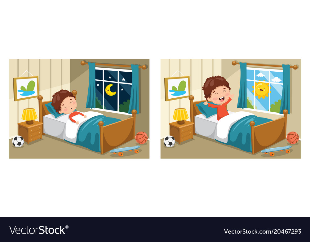 Sleeping and waking up vector image