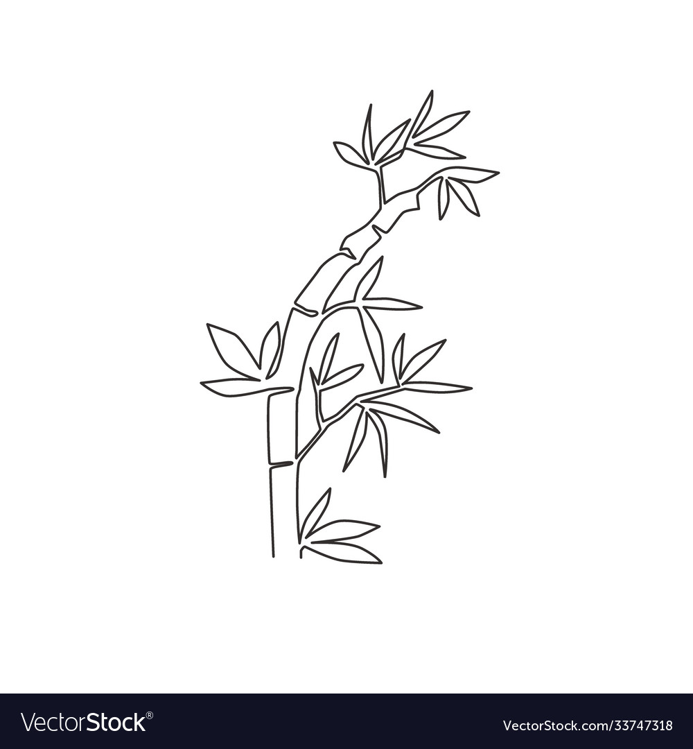 One single line drawing bamboo trees