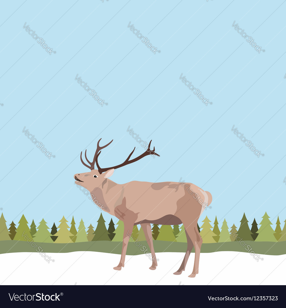 Deer with antler on seamless background of tree vector image