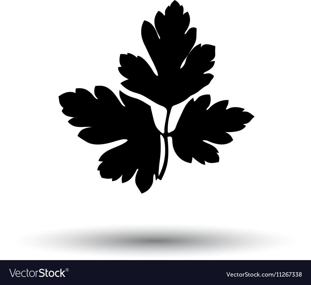 Parsley icon vector image