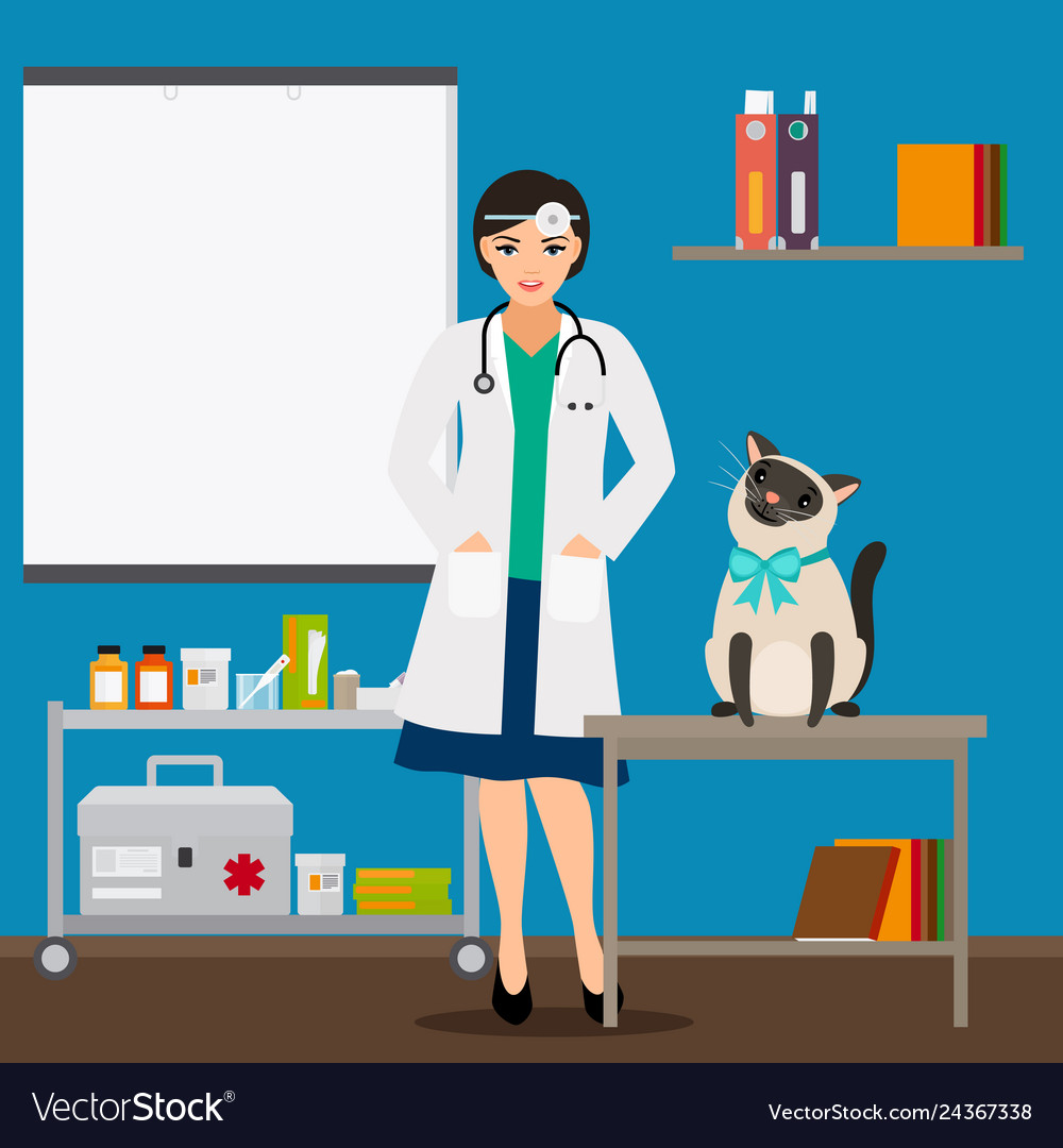 Veterinarian and cat in doctor office