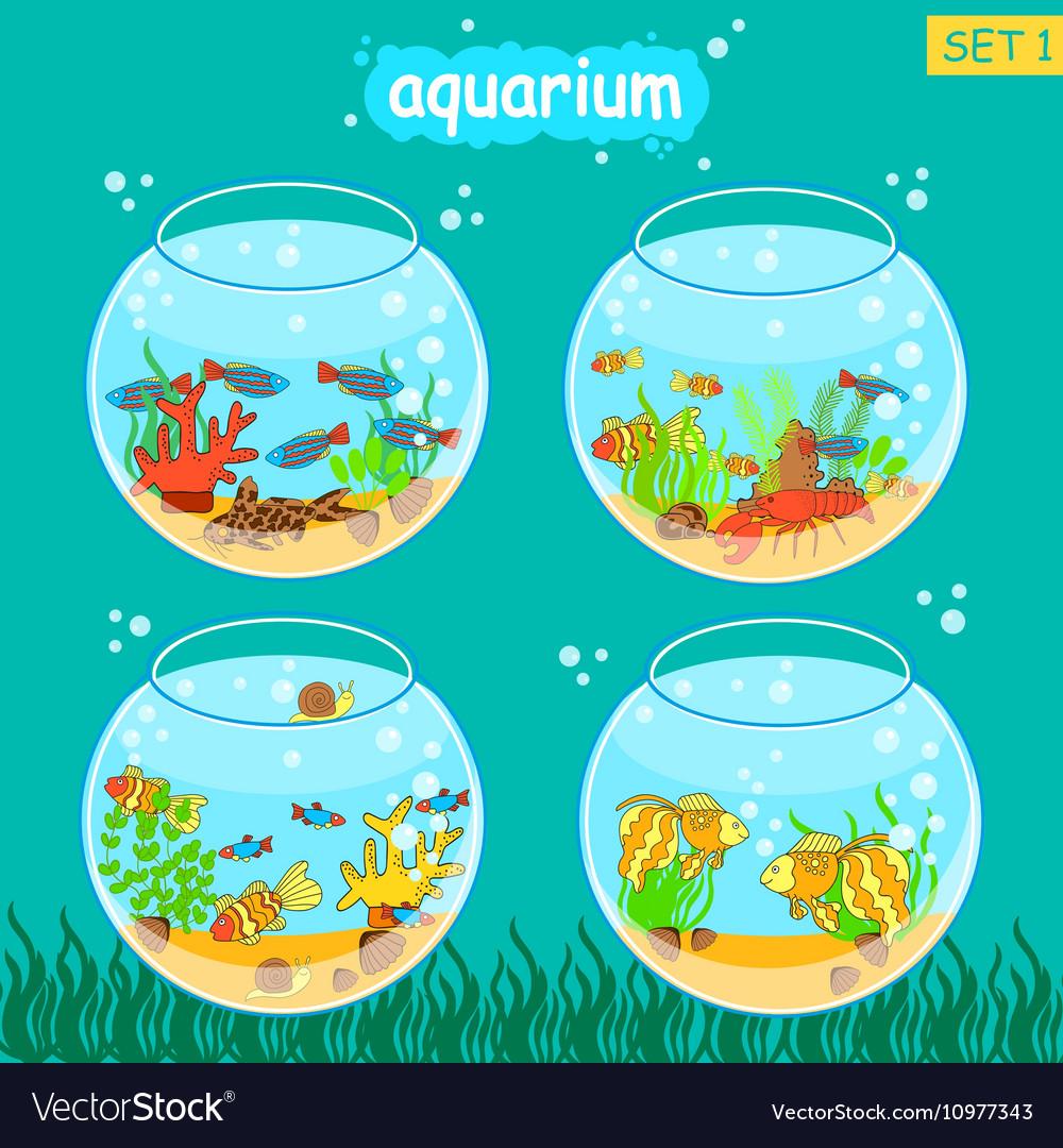 Aquarium set with fish and decoration Fishbowl