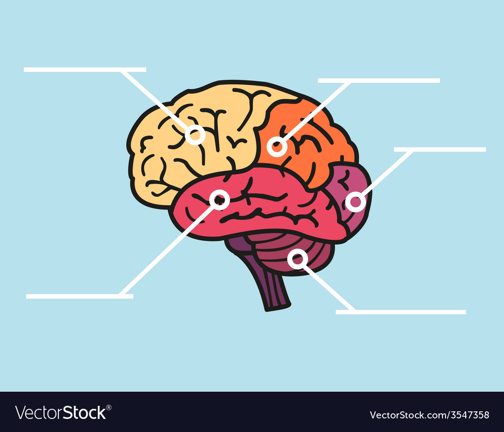 Map of brain with copyspace title vector image